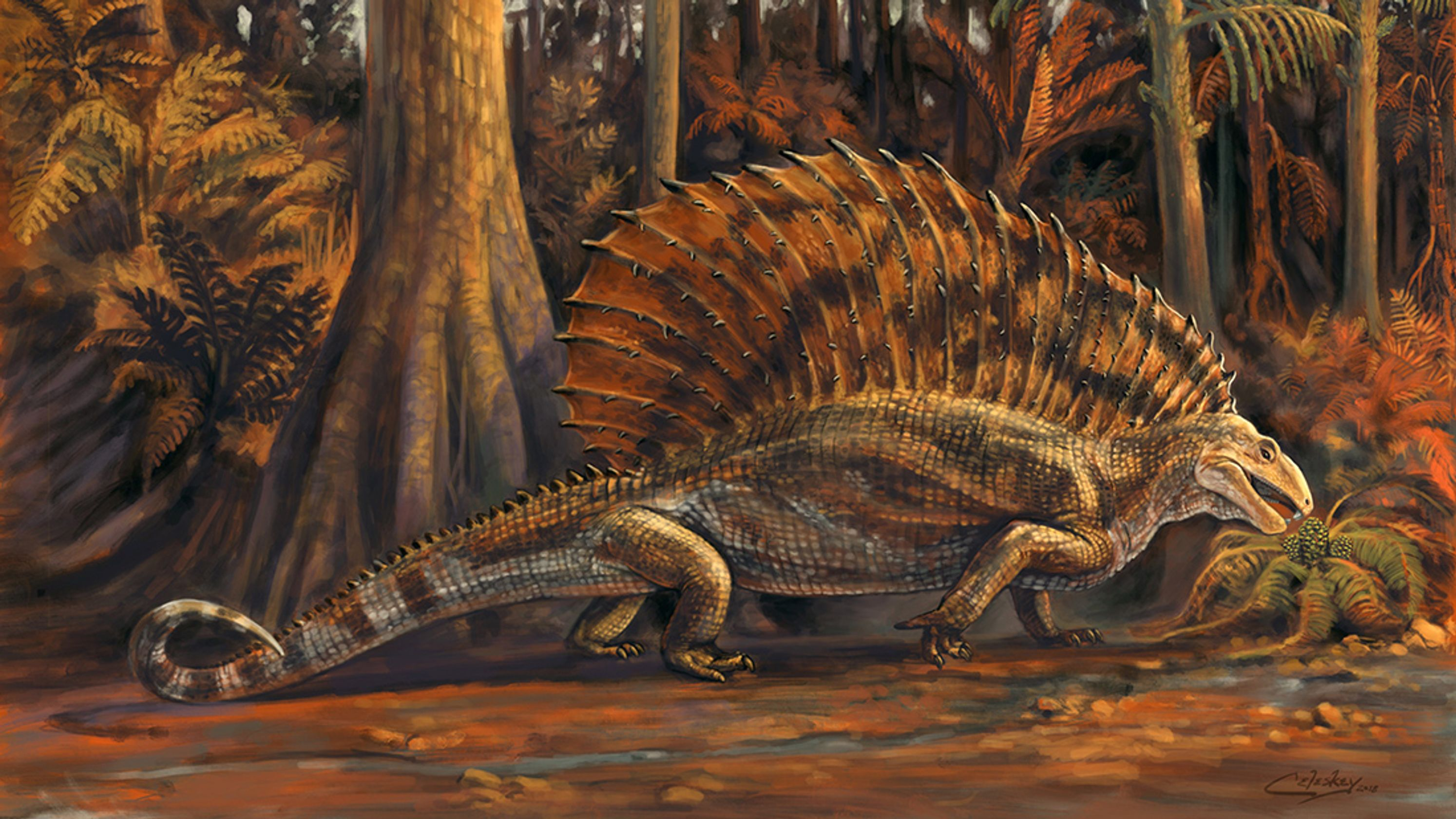 This artist's rendition of Gordodon depicts what the plant-eating reptile may have looked like in its natural habitat about 300 million years ago. The fossilized remains were discovered near Alamogordo in 2013. (Courtesy of Matt Celeskey, NMDCA)